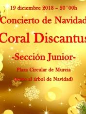 CONCIERTO DE NAVIDAD – 19 diciembre – 20´00h – SECC. JUNIOR DISCANTUS