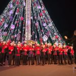 Navidad 2018 - Secc Junior